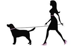 Assicurazioni per dog sitter